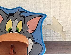 齧られた壁紙