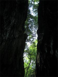 三段峡猿飛